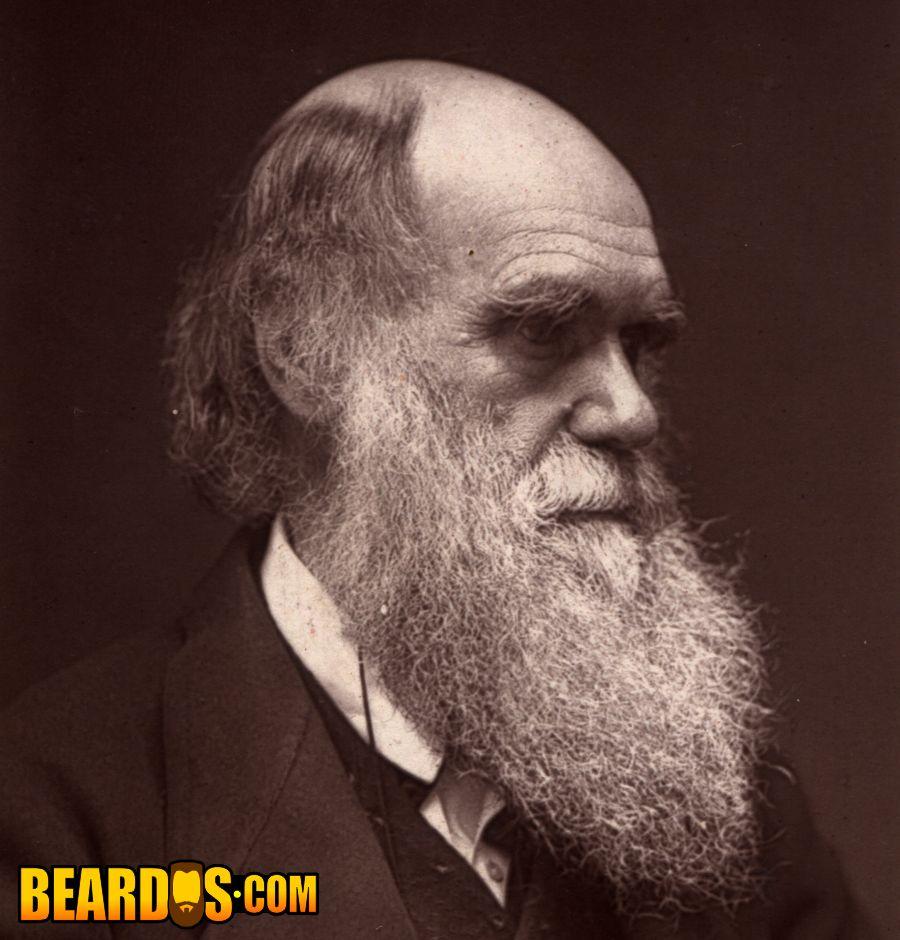 Charles Darwin beardo